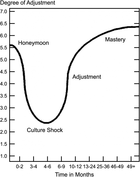 The U-Curve of Cultural Adaptation in CityKinder German Blog CityExperten