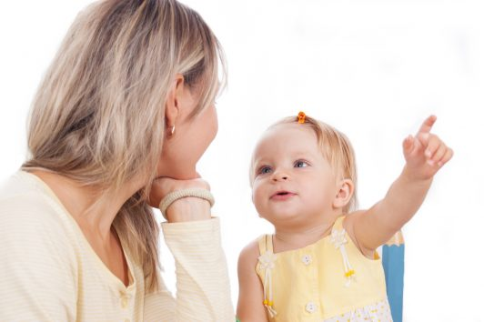 Toddler Talk Seminar