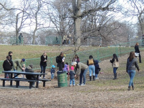 Easter Egg Hunt Brooklyn