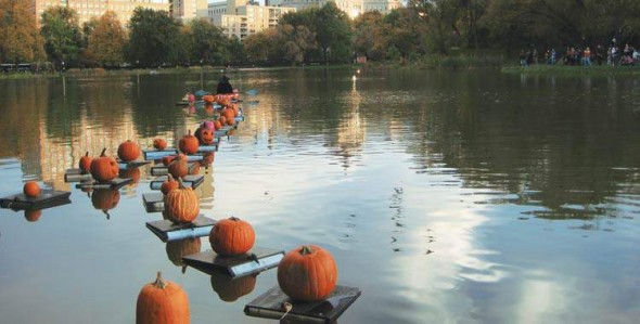 Pumpkin Floats Central Park