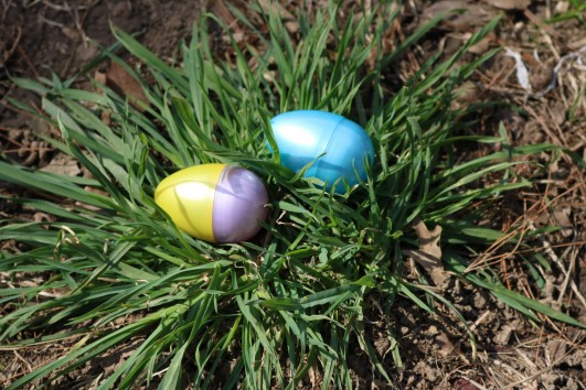 easter-egg-hunt-2016-brooklyn-german-families-event-ny-1
